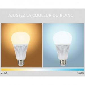 Ampoule LED couleur+blanc dynamique 9w-E27 FUT012