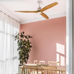 ALO LED Ventilateur de plafond blanc