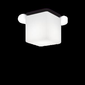 Luna pl1 small